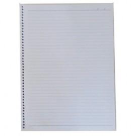 5 Miolos Caderno 96 fls offset 20 x 27,5 cm