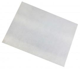 10 Placas PET formato 27,0 x 37,0 cm