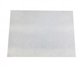 10 Placas PET formato 20,5 x 28,0 cm