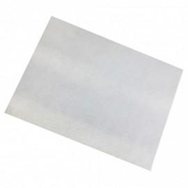 10 Placas PET Brilho Branca Formato 21,0 x 30,0 cm